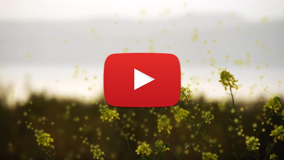 Bosch Entfernungsmesser Bauhaus : Luftreiniger für ihre gesundheit trotec